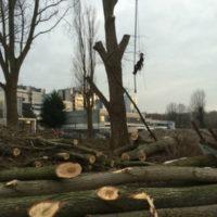 Germieco groenvoorzieningen Fred Roeskestraat en Parnas